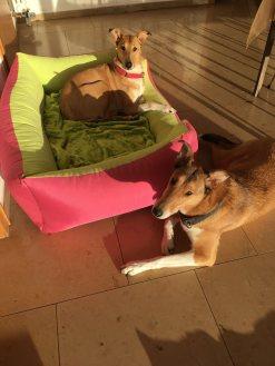 Jule und Frida
