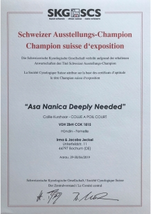 Schweizer Champion